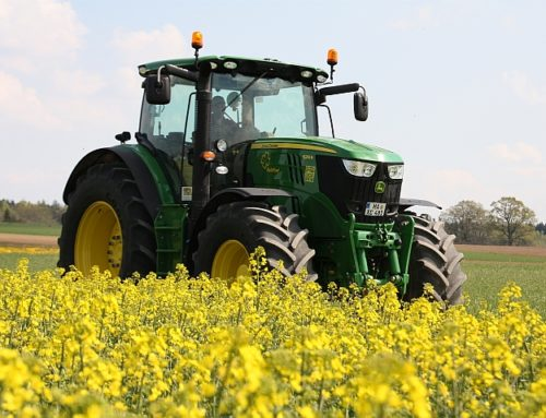 Rapeseed oil fuel suitable for injection systems of modern agricultural machinery
